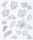Set of autumn leaves, chestnuts, acorns and viburnum on a background of exercise book in a cage. black contour — Stockvector