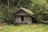 森の中の古い木造住宅 — ストック写真