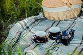Letní piknik — Stock fotografie