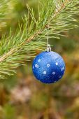 Great blue Christmas ball on branch — Fotografia Stock