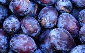 Wholesale plum fruits background — Stock Photo