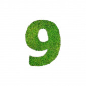 A grass nine 9 isolated on a white background  — Stock Photo