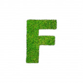 F grass letter isolated on white background — Stockfoto
