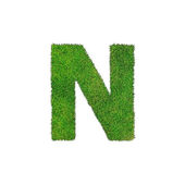 N grass letter isolated on white background — Stock Photo