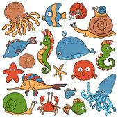 Set of vector elements (sea life) — Stock Vector