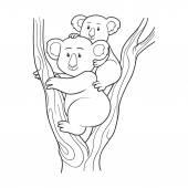 Coloring book (koala) — Stock Vector