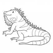 Coloring book (iguana) — Vettoriale Stock
