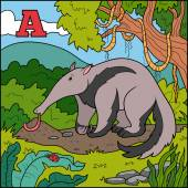 Color alphabet for children: letter A (anteater) — Stock Vector