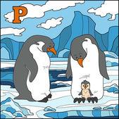 Color alphabet for children: letter P (penguin) — Stock Vector
