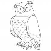 Coloring book (owl) — Stock Vector
