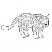 Coloring book (jaguar) — Stock Vector