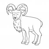 Coloring book (urial) — Stock Vector