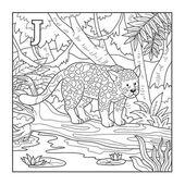 Coloring book (jaguar), colorless illustration (letter J) — Stock Vector