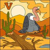 Color alphabet for children: letter V (vulture) — Stock Vector