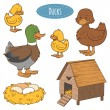 Set of cute farm animals and objects, vector family duck, colori — Stock Vector #71821643