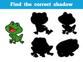 Find the correct shadow (frog) — Stock Vector