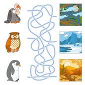 Maze game (birds and habitat) — Stok Vektör