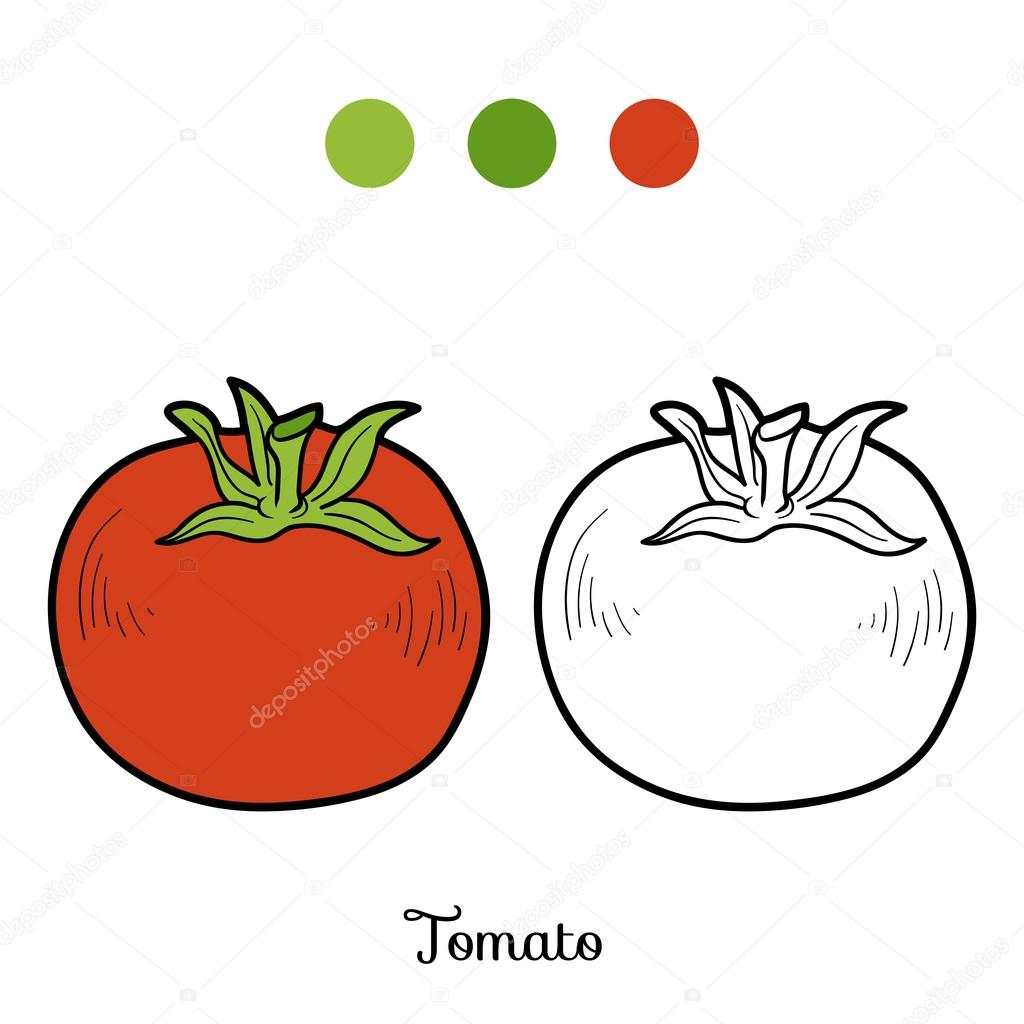 Coloring book pictures of vegetables - Coloring Book For Children Fruits And Vegetables Tomato Vector By Ksenya_savva