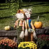 Halloween Decor — Stock Photo