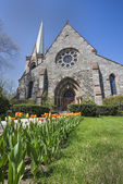 Tulips line the entrance sidewalk to First Reformed Church, Schenectady, NY — Stock Photo