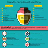 Infographics. How to distinguish natural honey from a fake — ストックベクタ