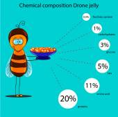 The information poster containing information on a chemical composition of drone jelly — Stock Vector