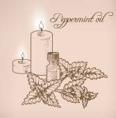 Peppermint essential oil and candles — Stock Vector