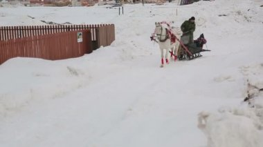 Riding in a sleigh, the road along the fence — ストックビデオ