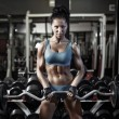 Young sexy brunette girl in the gym doing biceps exercise with barbell. Fitness woman push ups biceps with dumbbell — Stock Photo #52940133