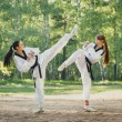 Two karate woman fighting on outdoor — Stock Photo #53629433