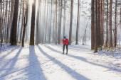 Fondisti in giacca rossa nella foresta — Foto Stock