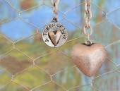 Two hanging silver heart pendants on chicken wire and colorful blurred background — Stock Photo