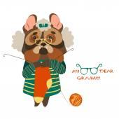 Cute dog grandmother knits socks — Stok Vektör