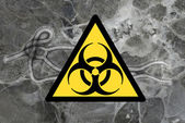 Ebola virus — Stock Photo