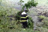 消防员意大利 — 图库照片