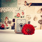 Old Retro Camera — Stok fotoğraf