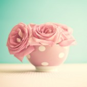 カップにピンクのバラ — ストック写真