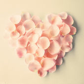Heart made from rose petals — Stock Photo