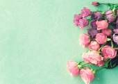 Pink roses on turquoise background — Stock Photo