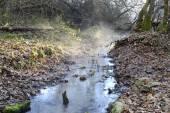 Small river, winter morning — Foto de Stock