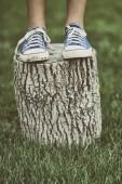 Girl standing on a tree stump — Stock Photo