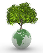 Tree grown on Earth globe — Stockfoto