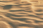 Gold rippled sand — Stock Photo