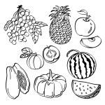 Fruit Set — Stock Vector #53106577