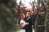 Wedding couple in city — Stock Photo