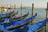 Venice, italy, Piazza San Marco, gondolas, gondola, summer, sunny day, new keyword — Stock Photo