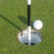 Golf Ball and Marker — Stock Photo #52083359