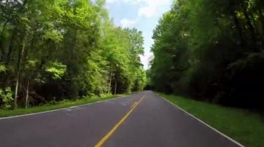 Smokies Empty Road-Motorcycle Passes — Stock Video