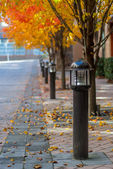 Light Posts in Fall — Stock Photo