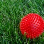 Постер, плакат: Red ball in grass